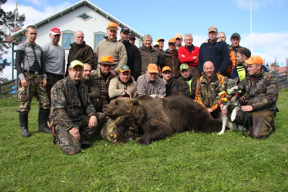 Bilder från Björnjakten 2012